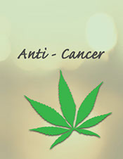 United patient's group article on cannabis and its effects on breast cancer. Dr. Christina Sanchez: The Importance of Both THC and CBD in Breast