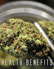 Business Insider article on the health beneifts of marijuana