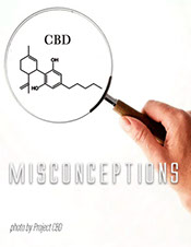 Project CBD article on the misconceptions of CBD and cannabis